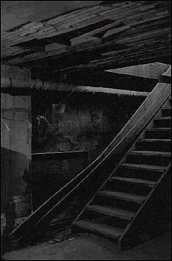 basement. Black Bedroom Furniture Sets. Home Design Ideas